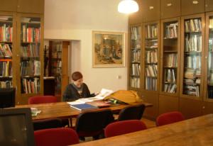 biblioteka FLU1